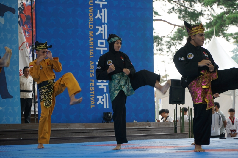 World Martial Arts Exchange Day for Youth Martial Arts Demonstration